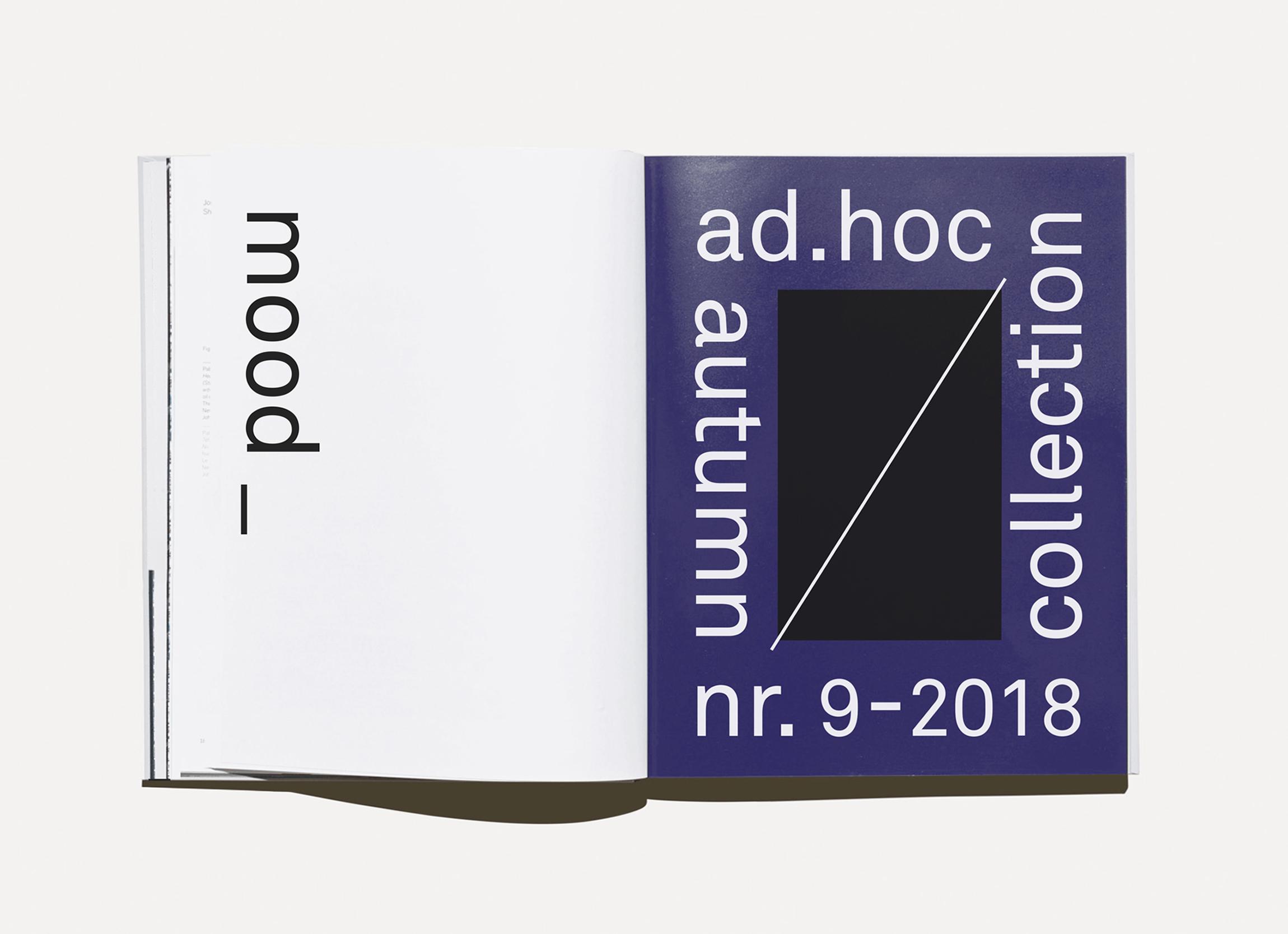 ad.hoc_web01